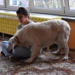 dogoterapia z psem Falkorem